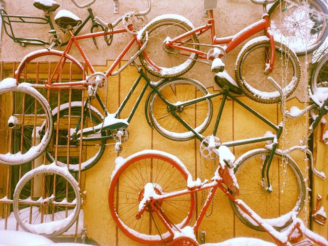 velosiped zima